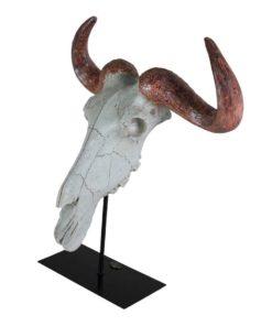 Teschio Buffalo
