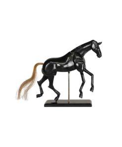Cavallo Anticato